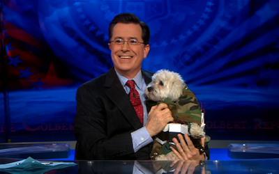 Colbert Report: 5 x Five - Colbert Moments: Cute Animals